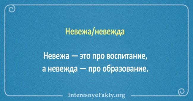 10-par-slov-znacheniya-kotoryih-putayut-3