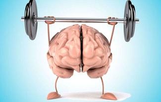 15 проверенных способов улучшить работу мозга