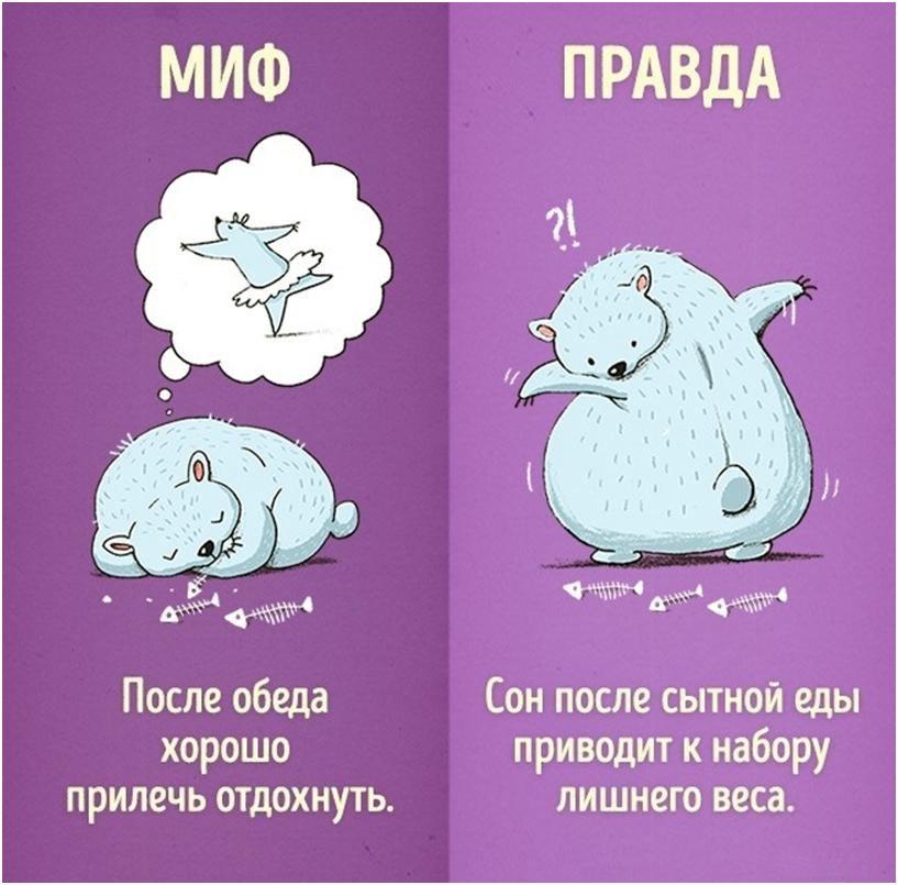 6-mifov-o-kotoryih-vyi-mogli-ne-znat-5