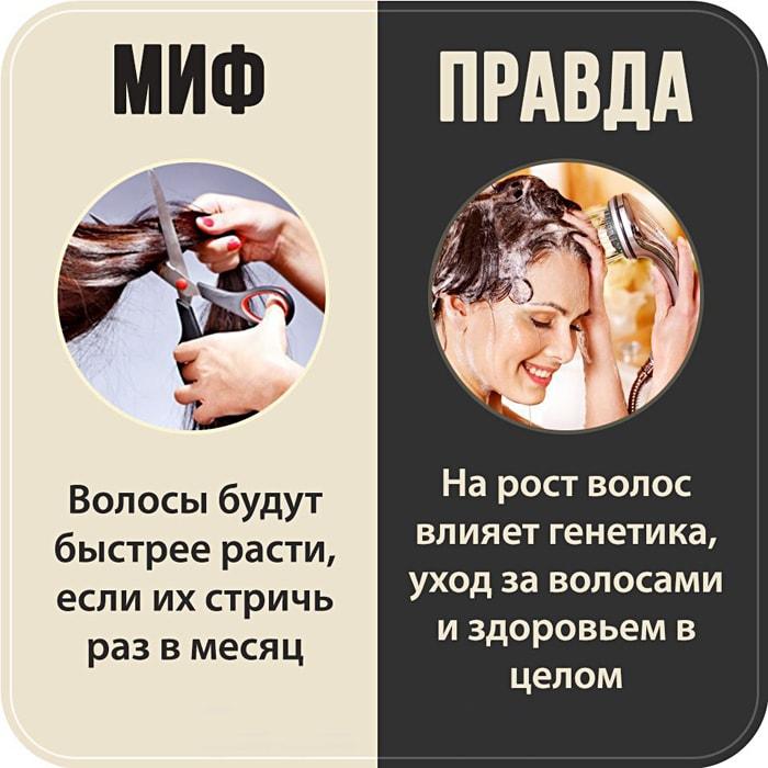7-populyarnyih-mifov-6