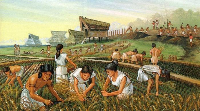 Agrarnaya-revolyutsiya-drevnih-lyudey