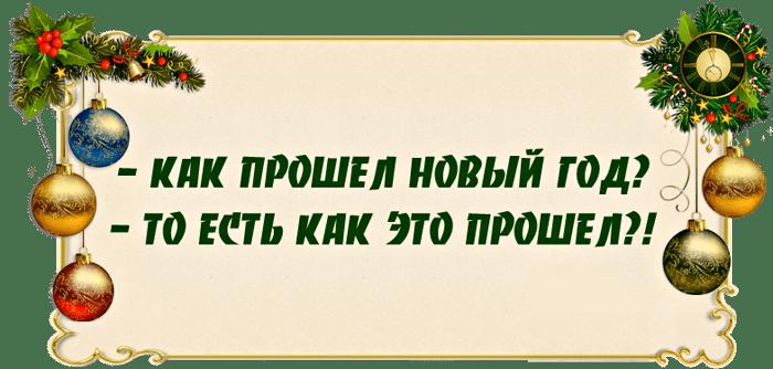 Anekdotyi-pro-Novyiy-god-2