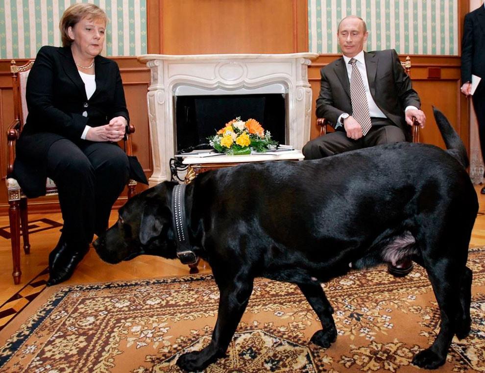 Angela-Merkel-i-Vladimir-Putin-s-sobakoy