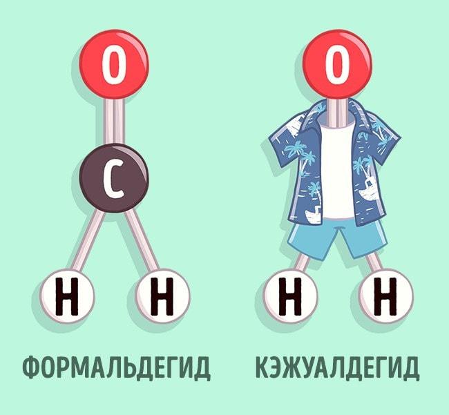 Biologi-shutyat-4