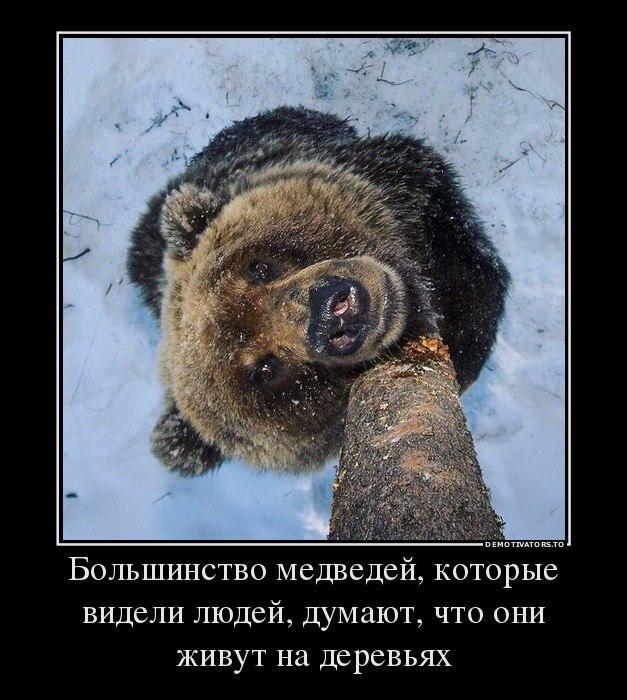 Demotivatoryi-prikolnyie-2