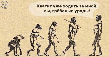 E`volyutsiya-cheloveka-karikatura