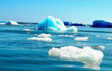 14 интересных фактов о Белом море