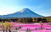 14 интересных фактов о Фудзияме