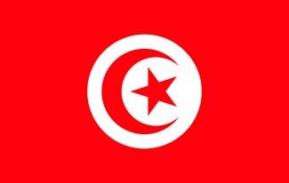 24 интересных факта о Тунисе