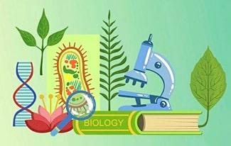19 интересных фактов о биологии
