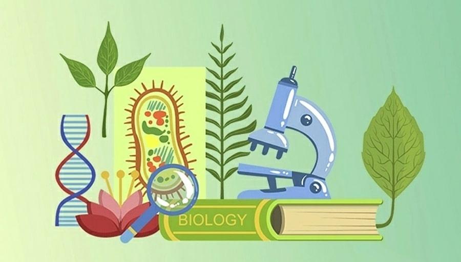 Interesnye-fakty-o-biologii