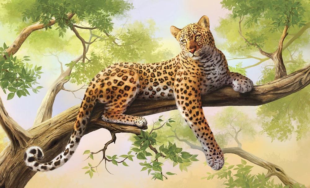 Interesnye-fakty-o-leopardah