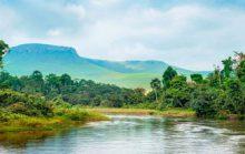 12 интересных фактов о реке Конго