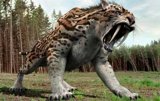 22 интересных факта о вымерших животных