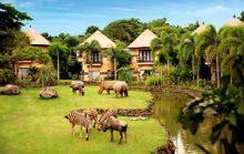 20 интересных фактов об Уганде