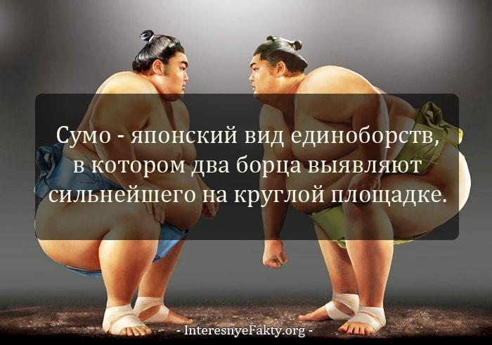 Interesnyie-faktyi-o-YAponii-i-yapontsah-2