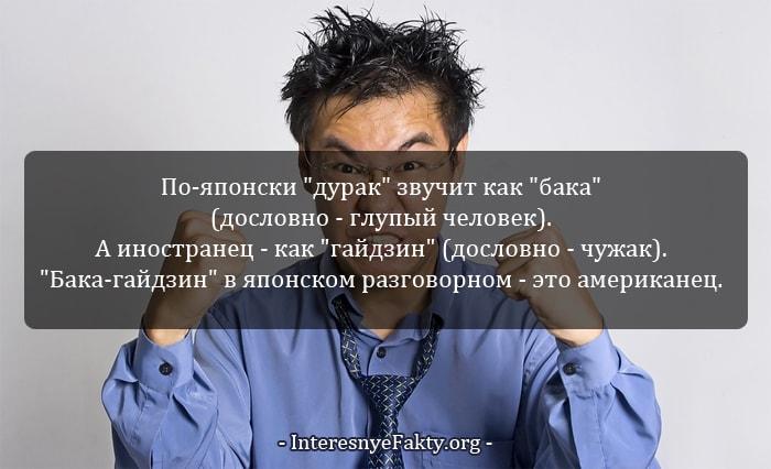 Interesnyie-faktyi-o-YAponii-i-yapontsah-4