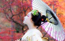 Интересные факты о Японии и японцах
