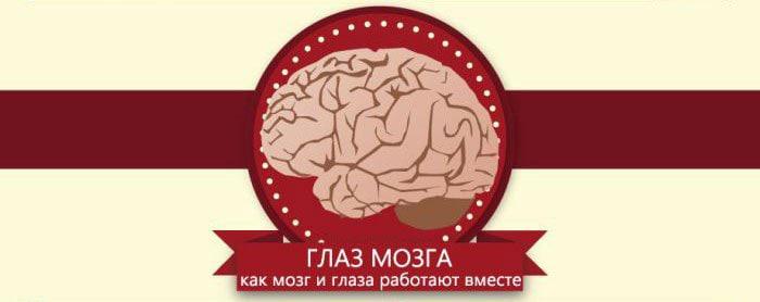Interesnyie-faktyi-o-glazah-16