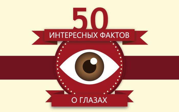 Interesnyie-faktyi-o-glazah-50-interesnyih-faktov-o-glazah