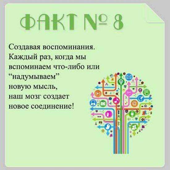 Interesnyie-faktyi-o-mozge-8