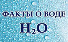 37 интересных фактов о воде