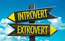 Интроверты и Экстраверты