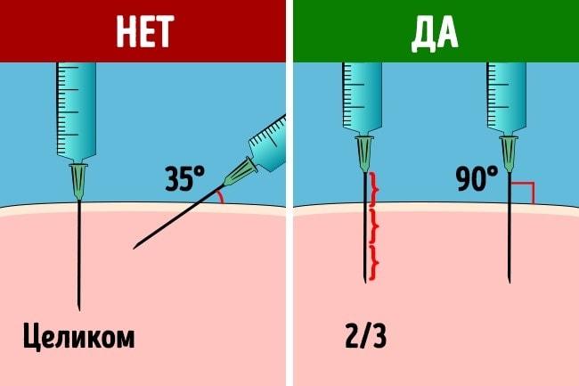 Kak-delat-ukol-v-yagoditsu-2