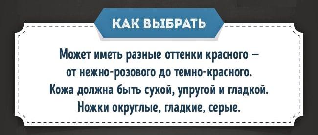 Kak-prigotovit-indeyku-2