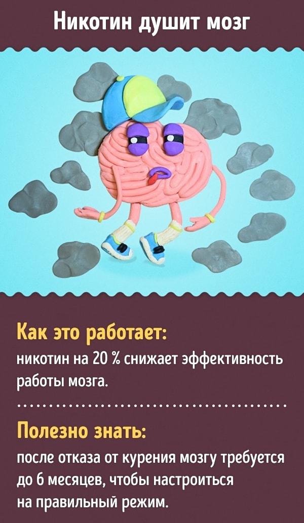 Kak-uluchshit-rabotu-mozga-5