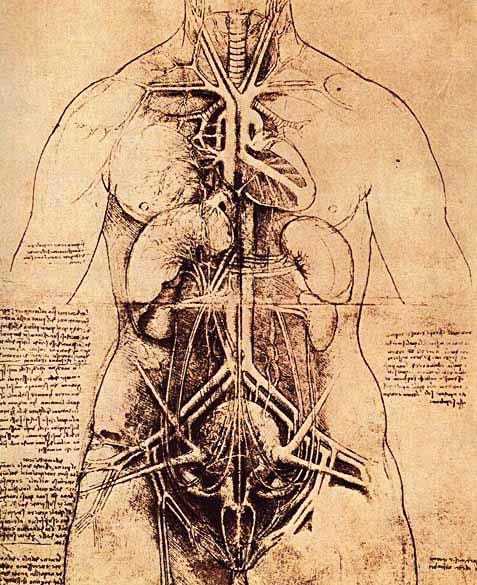 Kartinyi-Leonardo-da-Vinchi-10