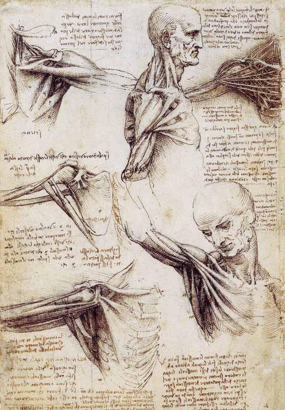 Kartinyi-Leonardo-da-Vinchi-17