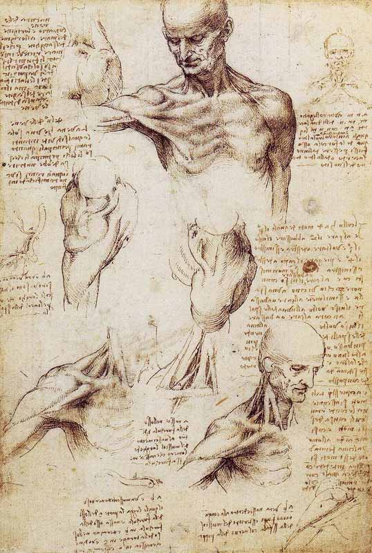 Kartinyi-Leonardo-da-Vinchi-19