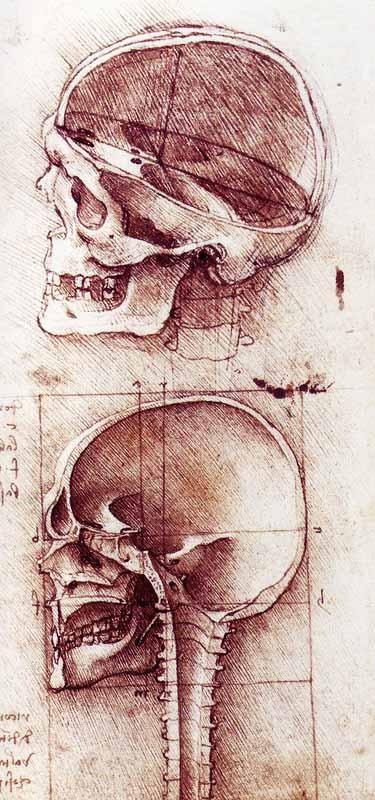Kartinyi-Leonardo-da-Vinchi-21