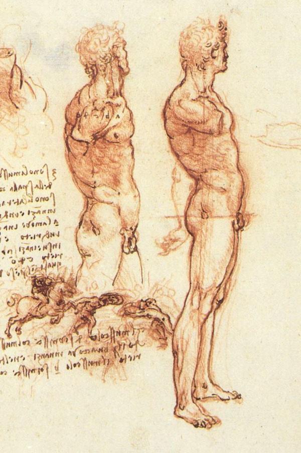 Kartinyi-Leonardo-da-Vinchi-32