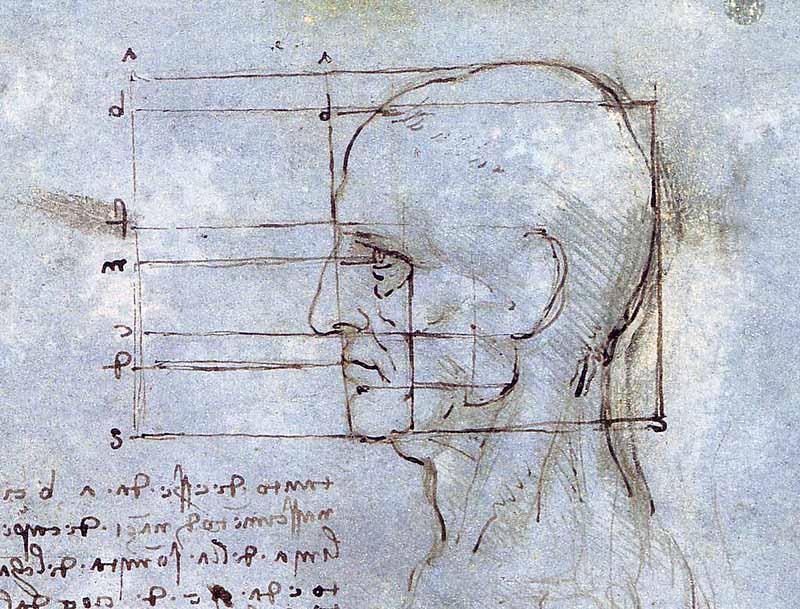 Kartinyi-Leonardo-da-Vinchi-4