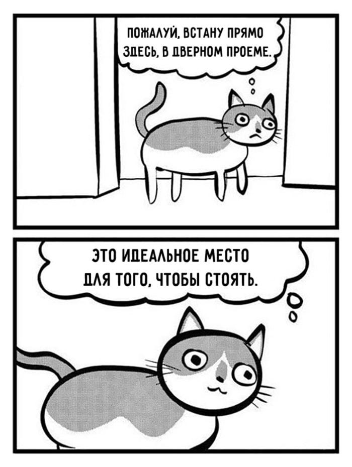 Komiksyi-pro-kotov-14