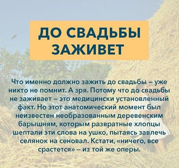 Kryilatyie-vyirazheniya-Do-svadbyi-zazhivet