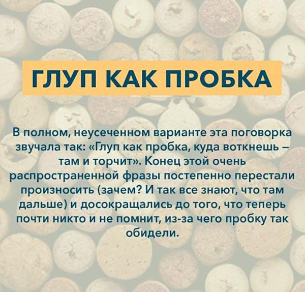 Kryilatyie-vyirazheniya-Glup-kak-probka