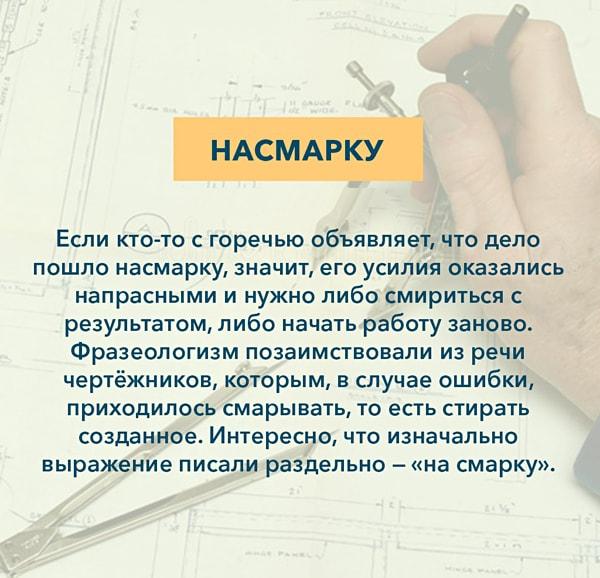 Kryilatyie-vyirazheniya-Nasmarku