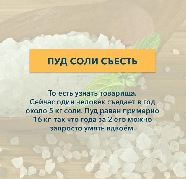 Kryilatyie-vyirazheniya-Pud-soli-s'el