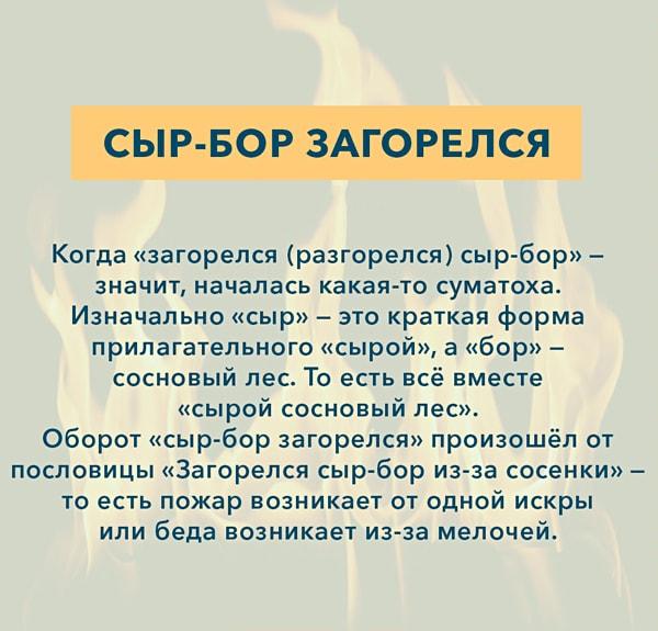 Kryilatyie-vyirazheniya-Syir-bor-zagorelsya