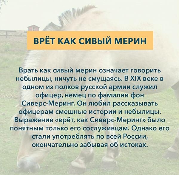 Kryilatyie-vyirazheniya-Vret-kak-sivyiy-merin