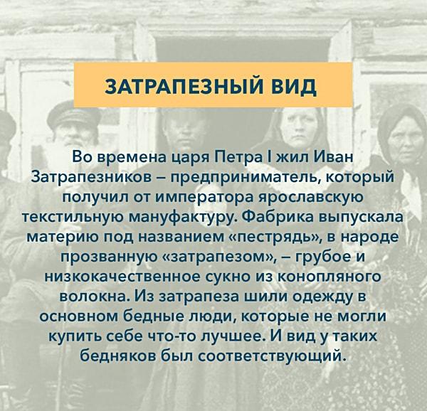 Kryilatyie-vyirazheniya-Zatrapeznyiy-vid