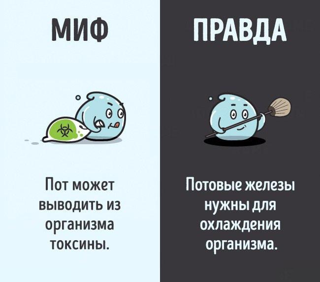 Mifyi-o-chelovecheskom-tele-10