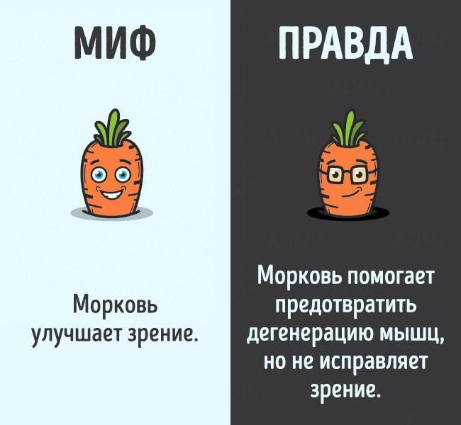 Mifyi-o-chelovecheskom-tele-2