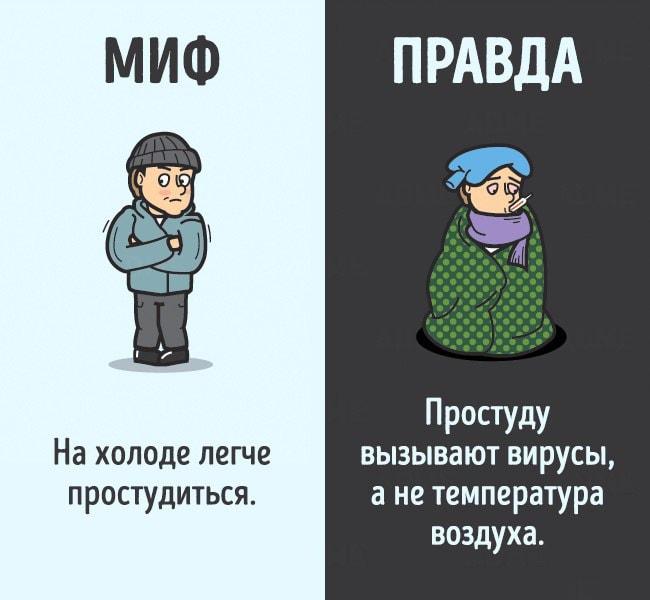 Mifyi-o-chelovecheskom-tele-6