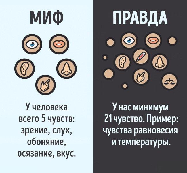 Mifyi-o-chelovecheskom-tele-8