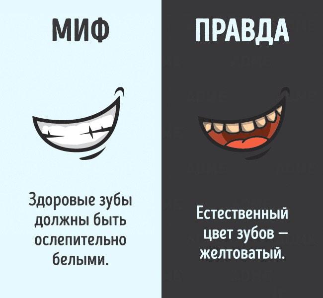Mifyi-o-chelovecheskom-tele-9