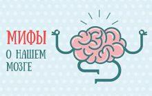 Мифы о мозге ТОП-10